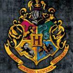 hogwartsks